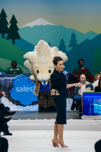 Mason Frank - Salesforce World Tour New York 12